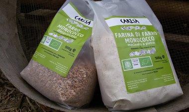 Farina e granella di farro monococco