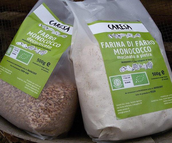 Il farro monococco è una pianta della famiglia delle graminacee ed è ritenuto il primo cereale addomesticato dall'uomo che lo coltivava circa 12000 anni fa in Medio Oriente.