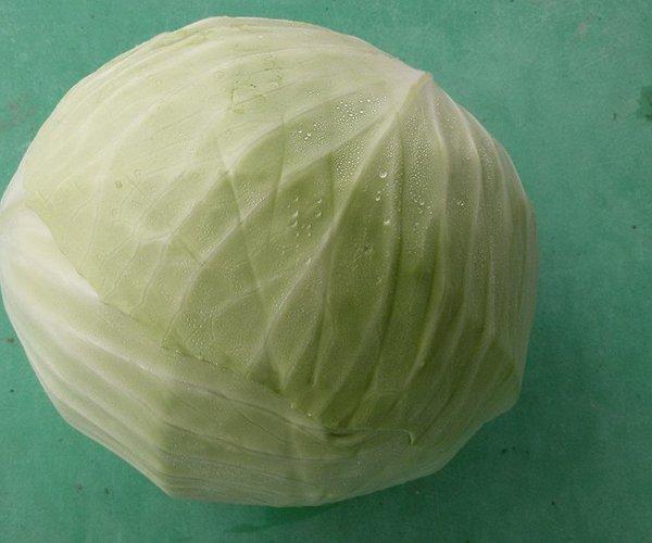 Come tutte le crucifere è una delle verdure più nutrienti e salutari del mondo per le varie e diverse caratteristiche benefiche.
