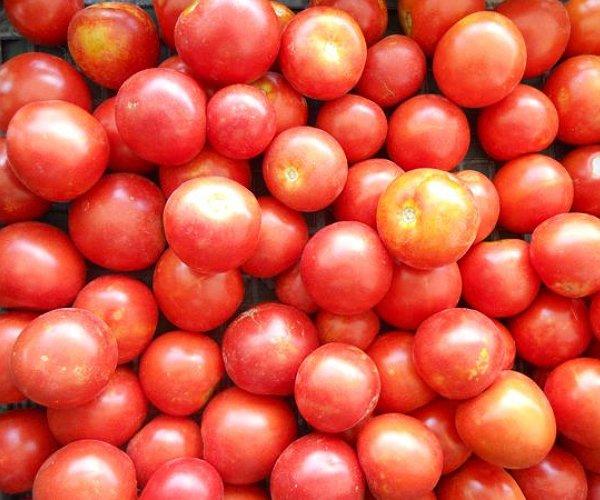 Varietà di pomodoro. Ingrediente insostituibile nella dieta mediterranea