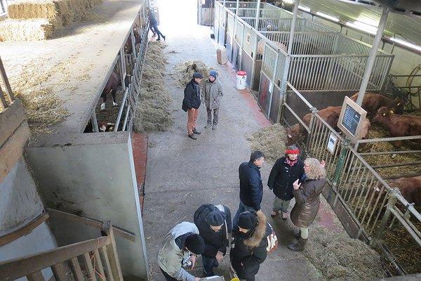 care farm: Boerderij 't Paradijs