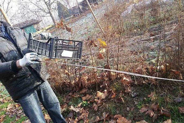 Pulitura asparagiai - novembre 2015