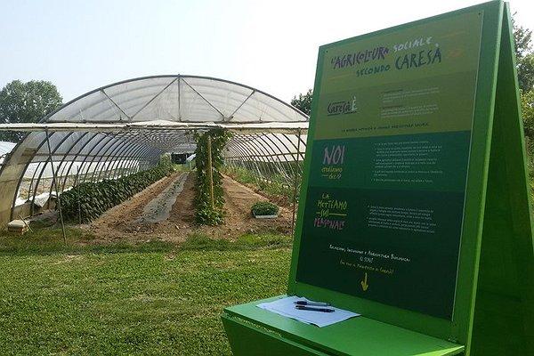Caresà a campo aperto: il nostro manifesto sull'agricoltura sociale
