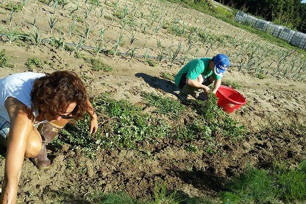 Alfabeto Caresà: A come Agricoltura sociale