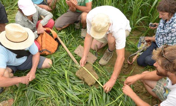 """Incontro """"La salute del suolo"""" del 26 e 27 giugno"""