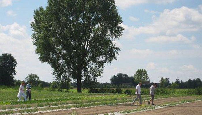 Caresà a campo aperto - settembre 2011