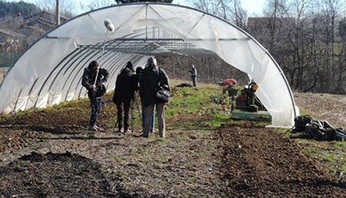 I cinque cortometraggi del documentario 'Nuove Terre' sull'agricoltura sociale.