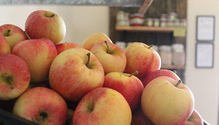 Le mele bio fanno bene. Lo dice la scienza